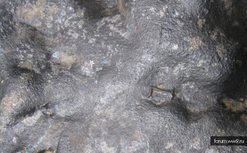 пес с пункта приема металлалома