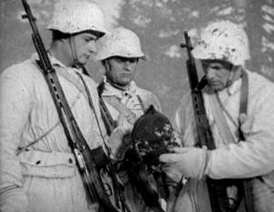 Камуфляж шлемов СШ-36, СШ-39, СШ-40 и ЧЕХЛЫ к ним