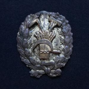 Значок для продармейцев. Оригинал. 1918-1921 г.