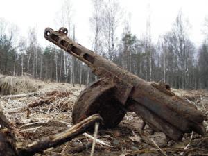 Раскопки в Кировском районе Ленинградской области