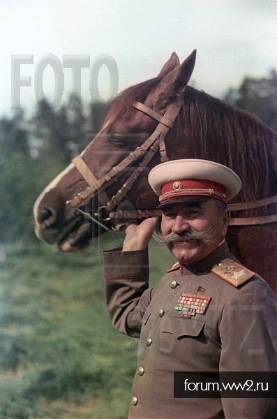 оголовье для лошади РККА, кавалерийское