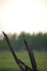 Братская могила в деревне Вороново Ленинградской области