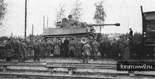 Провальный дебют майора Меркера или первые тигры под Ленинградом.