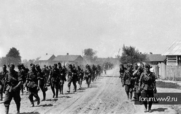 250 пехотная дивизия (голубая дивизия)