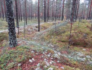 Финляндия по 1941
