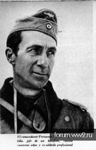 250 пехотная дивизия