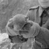 Подсумок армии США M1923 Am... - последнее сообщение от Paul A