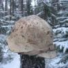 Сделаю военные сувениры на... - последнее сообщение от Narvik 1940